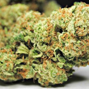 Buy God Bud marijuana strain