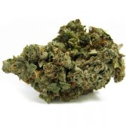 Buy Headband marijuana strain