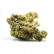 Buy Lemon Skunk