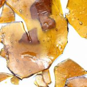Buy Girl Scout Cookies Shatter