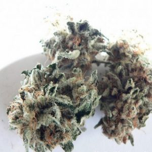 Buy Blackberry Kush